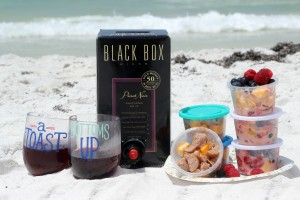 Packable Picnic Party For the Beach